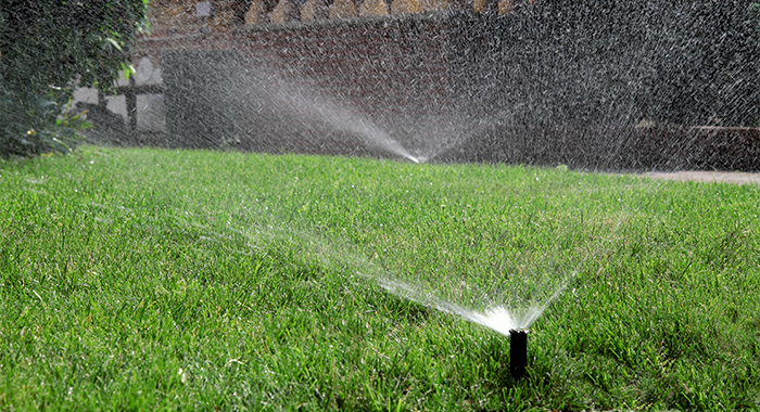 Will an automatic sprinkler system use more water?